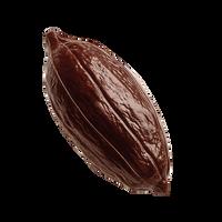 CRIOLLO 70% COCOA